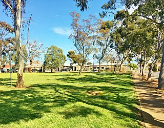 Crown Street Reserve 1