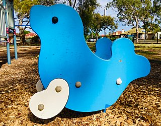 Cowra Crescent Reserve South Playground Springer 1