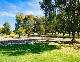 Klippel Avenue Reserve 5