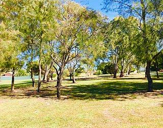 Klippel Avenue Reserve 4
