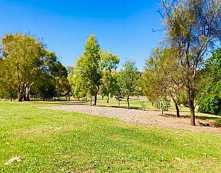 Klippel Avenue Reserve 2