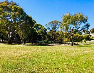 Klippel Avenue Reserve 1