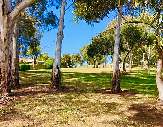 Scarvell Avenue Reserve 1