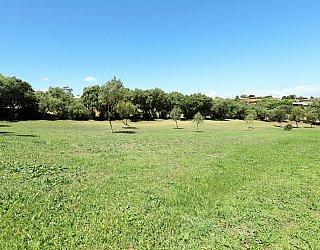 Coorabie Crescent Reserve 3
