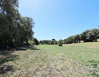 Coorabie Crescent Reserve 4