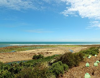 Cormorant Drive Reserve North Beach 2