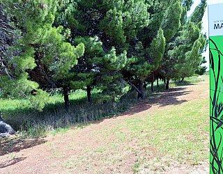 Cormorant Drive Reserve North Sign 1