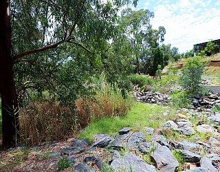 Cormorant Drive Reserve South Bridge 2