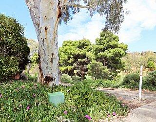 Cormorant Drive Reserve South Entrance 1