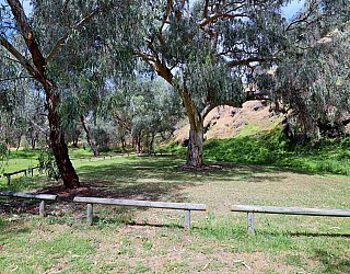 Cormorant Drive Reserve South Fenced Clearing 1