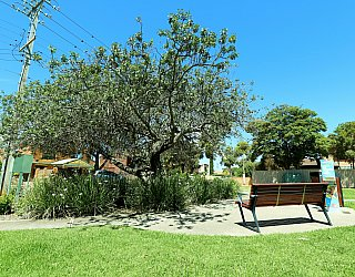 Audrey Street Reserve Facilities Seat 1