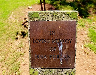 Quick Road Reserve Plaque Dina Furlan 1