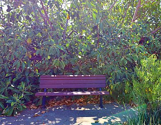 Columbia Crescent Reserve Facilities Seat 1