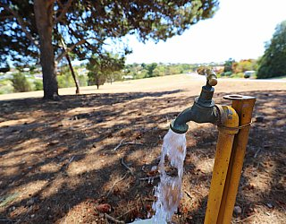 Olivier Terrace Reserve Facilitities Tap 1