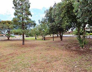 Central Avenue Reserve North 1