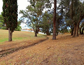 Central Avenue Reserve North 4