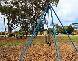 Central Avenue Reserve South Playground Swings 1