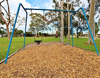 Hamilton Park Reserve Playground Swing 1