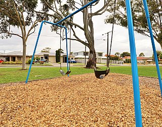 Hamilton Park Reserve Playground Swing 2