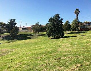 Roy Lander Reserve Grass 7