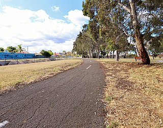 Willoughby Avenue Reserve Sturt River Linear Park 3