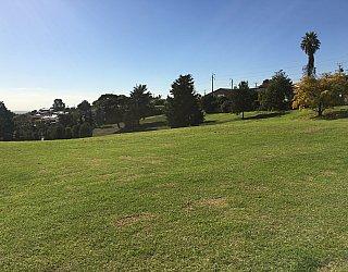 Roy Lander Reserve Grass 9