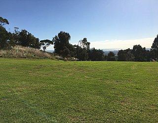 Roy Lander Reserve Grass 11