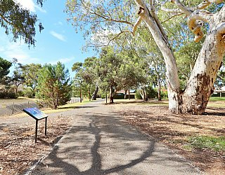 Maldon Avenue Reserve Sturt River Linear Park 2