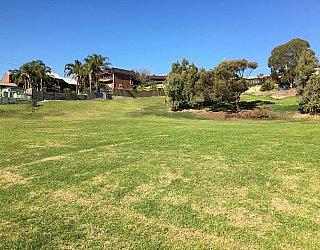 Roy Lander Reserve Grass 13