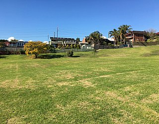 Roy Lander Reserve Grass 14