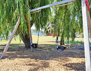 Shamrock Road Reserve Playground Swings 1