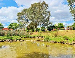 Tarturninthi Duck Pond 2