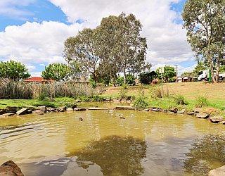 Tarturninthi Duck Pond 3