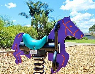 Tilley Court Reserve Playground Springer 1