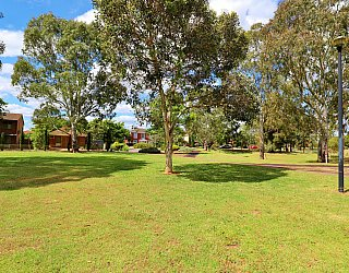 Trowbridge Avenue Reserve 1