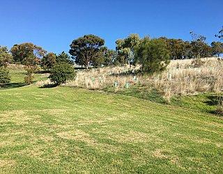 Roy Lander Reserve Grass 17