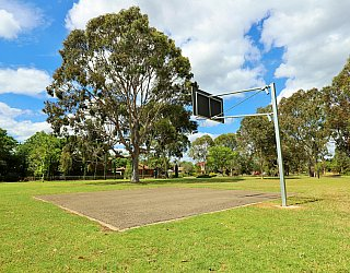 Trowbridge Avenue Reserve Sport Basketball 1