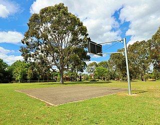 Trowbridge Avenue Reserve Sport Basketball 1