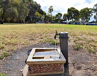 Willoughby Avenue Reserve Facilties Tap 1