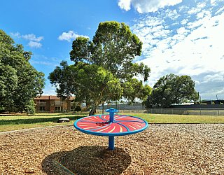 Willoughby Avenue Reserve Playground Gyro Spinner 2