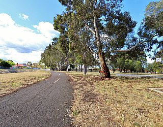 Willoughby Avenue Reserve Sturt River Linear Park 2
