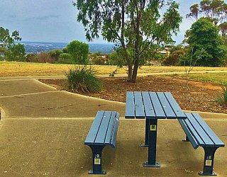 Roy Lander Reserve Picnic Table 1