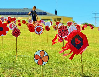 Heron Way Reserve Remembrance Day 2018 Poppies 2
