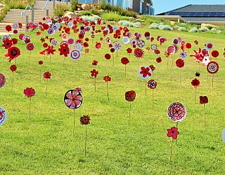 Heron Way Reserve Remembrance Day 2018 Poppies 1