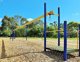 Alison Avenue Reserve Playground Flying Fox 1