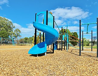 Alison Avenue Reserve Playground Multistation 2