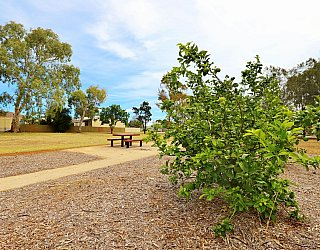 Branksome Terrace Reserve 3