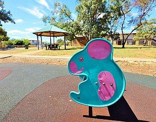 Graham Watts Reserve Playground Springer 1
