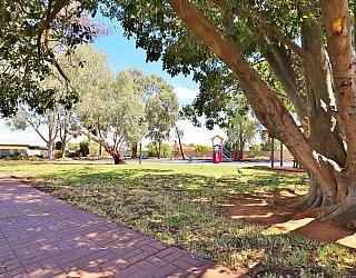 Graham Watts Reserve Tree 2