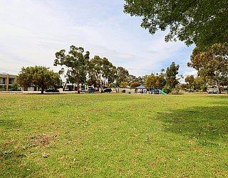 Mckay Street Reserve 2